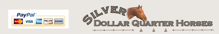 Silver Dollar Quater Horses